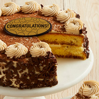 Zoomed in Image of Tiramisu Classico Cake